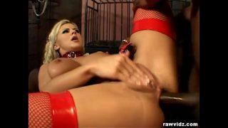 Blonde Bree Olson slave for sex